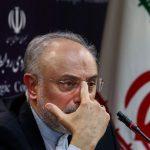 صالحی: برجام راهها را باز کرد/ احمدی نژاد اعتقادی به مذاکرات محرمانه با آمریکا نداشت و به من می گفت اشتباه می کنی