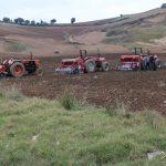 آغاز کشت مکانیزه کلزا در مزارع نکا با حضور رئیس سازمان جهاد کشاورزی مازندران
