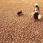 فائو هشدار داد؛ افزایش ۱۲۲میلیون نفری فقرای جهان به دلیل تغییر اقلیم تا ۲۰۳۰