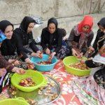 جشنواره انار دونه دونه در مدرسه شهید راستگوی روستای چلمردی