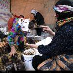 چهارمین جشنواره انار اشرف در بهشهر