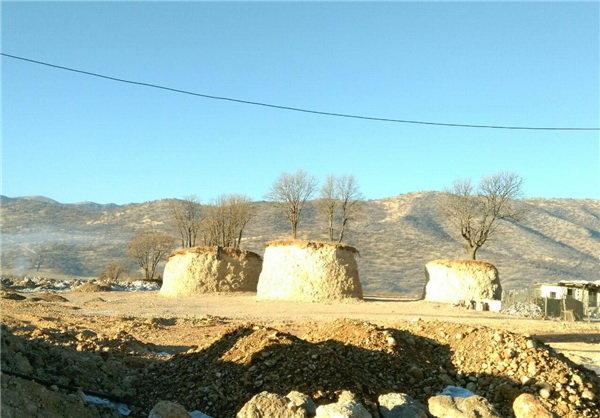 جریمه پیمانکار قطعکننده درختان بلوط در محور «یاسوج – اصفهان»