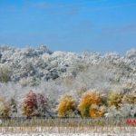 برف پاییزی، منطقه دودانگه ساری