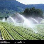 معاون وزیر جهاد کشاورزی: ۷۰۰ میلیارد ریال برای آبیاری تحت فشار در بودجه ۹۶ کشور پیش بینی شده است
