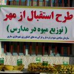 طرح استقبال از مهر و توزیع میوه برای دانش آموزان مقطع ابتدایی در مدارس مناطق سه گانه شهرداری ساری برگزار شد