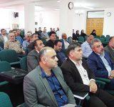 برگزاری کارگاه تخصصی زراعت چوب در اداره کل منابع طبیعی و آبخیزداری مازندران- ساری
