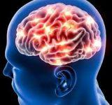 هر ۵ دقیقه یک ایرانی سکته مغزی میکند