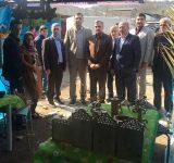 برپایی نمایشگاه صنایع دستی جذابیت گردشگری مازندران