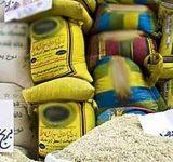 همزمان با آغاز رسمی برداشت شلتوک ؛ استاندار مازندران خواستار توقف واردات و اعلام نرخ خرید توافقی برنج شد
